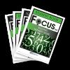 FOCUS On Mathematics Level E