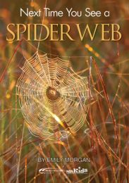 Next Time You See a Spider Web