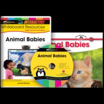 Sight Word Readers: Animal Babies (IWB Set)