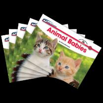 Sight Word Readers: Animal Babies (Set of 5 Books)
