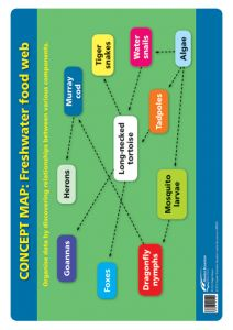 Poster: The Thinking School Tool: CONCEPT MAP