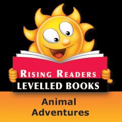 Rising Readers: Animal Adventures