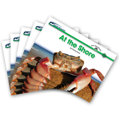 Sight Word Readers: At the Shore Book (Set of 5 Books)