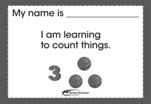 CA11376-learning-to-count-things